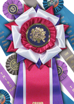 assorted rosette ribbons
