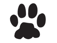 paw-print Icon selected.