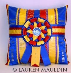 ribbon rosette award recycling pillow