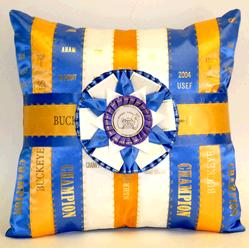 ribbon rosette award pillow