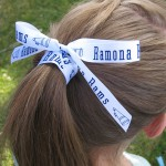 ribbon rolls and hair accessories and bows