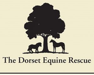 the dorset equine rescue coller industried customer donations stock award ribbons