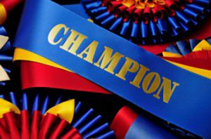 award all champions in your competitions with these rosette ribbons
